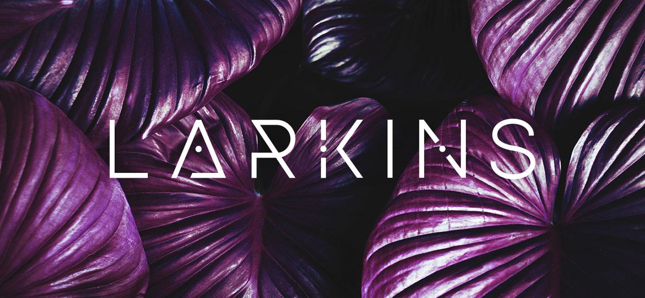 Larkins Band Logo Design Manchester