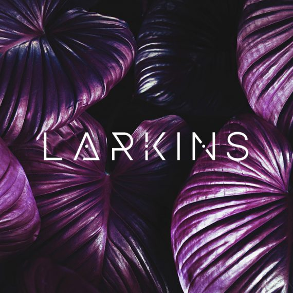 Larkins Band Logo Design