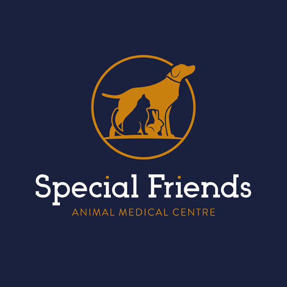 Special Friends Vets Logo Design Birmingham