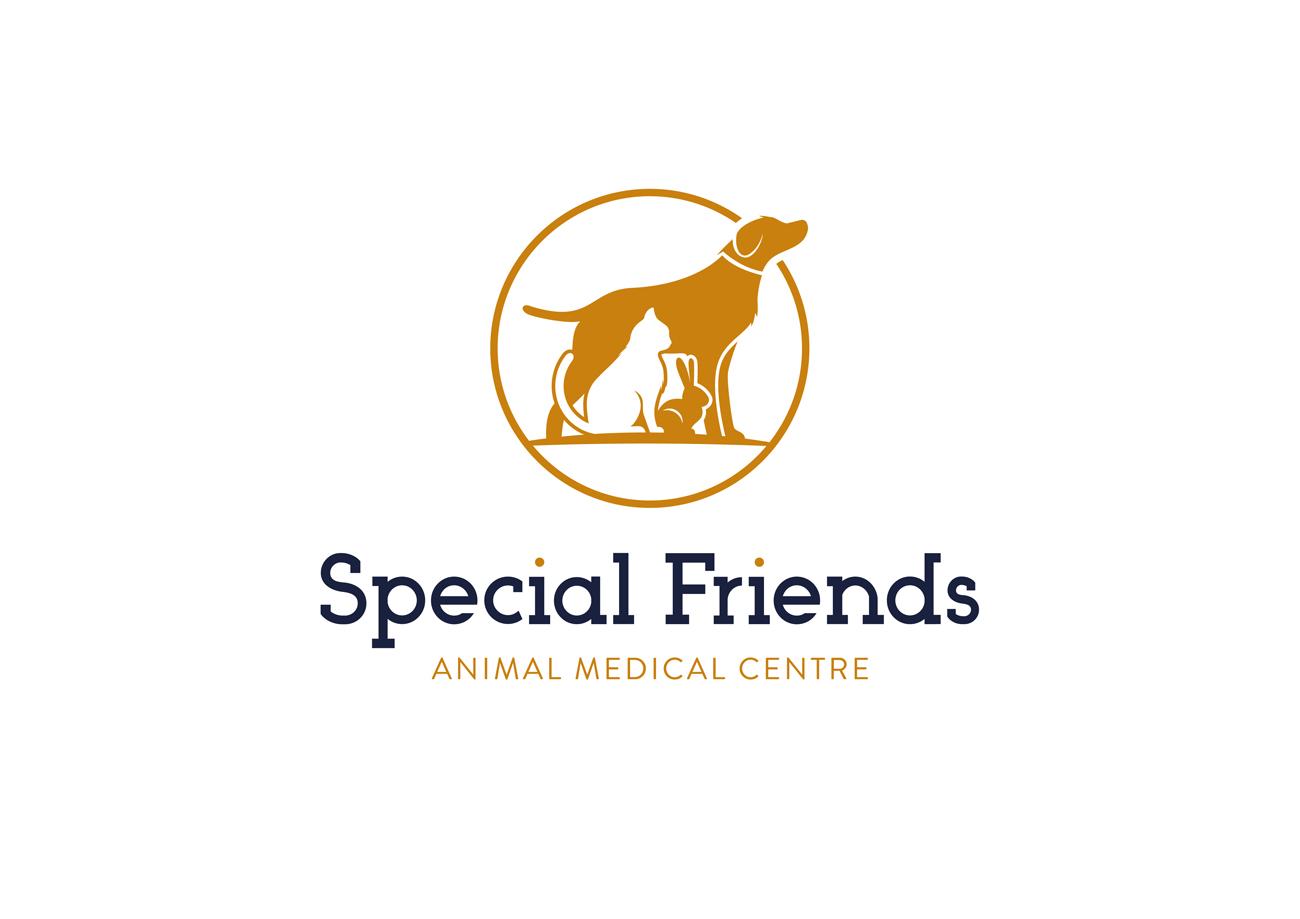 Special Friends Vets Logo Design Birmingham White Stacked