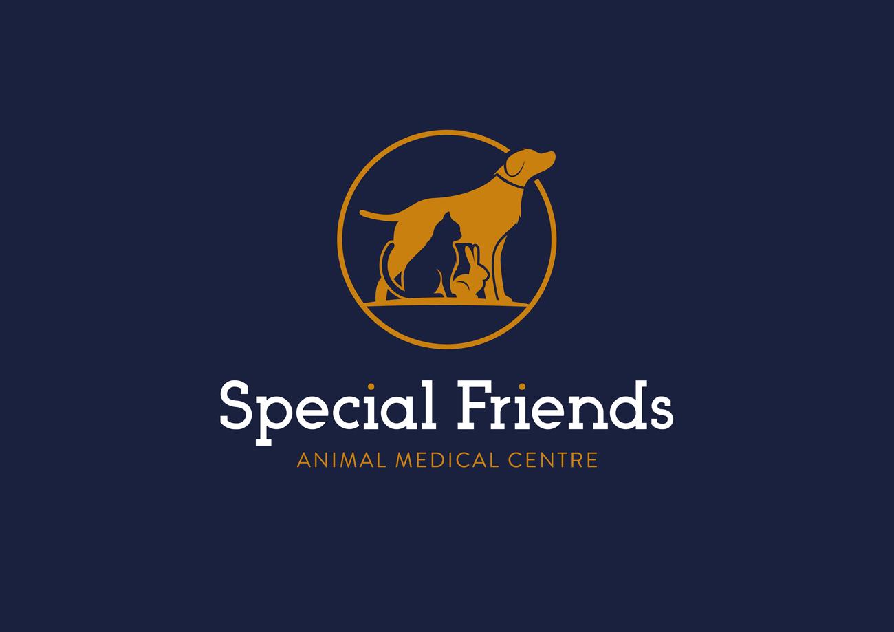 Special Friends Vets Logo Design Birmingham Blue Stacked