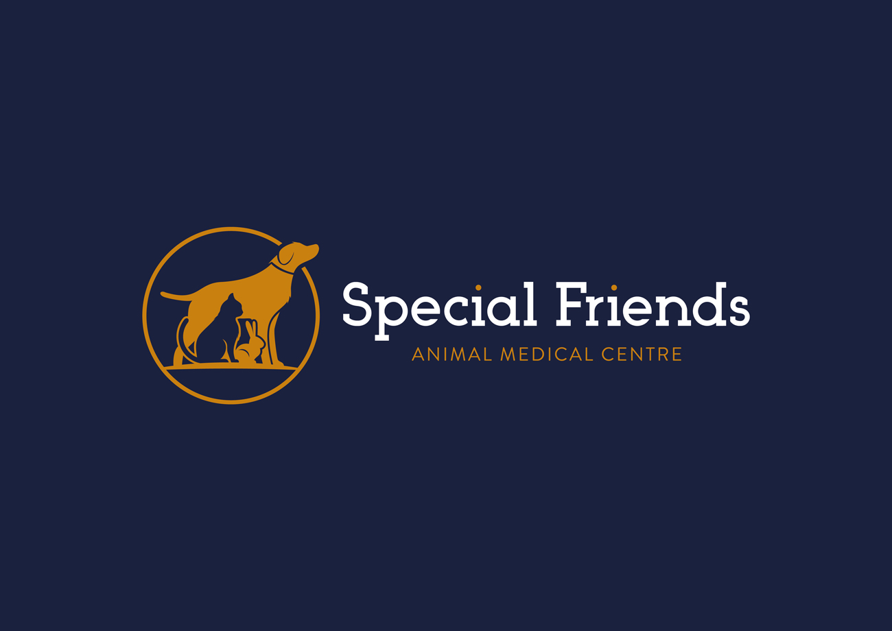 Special Friends Vets Logo Design Birmingham Blue Linear